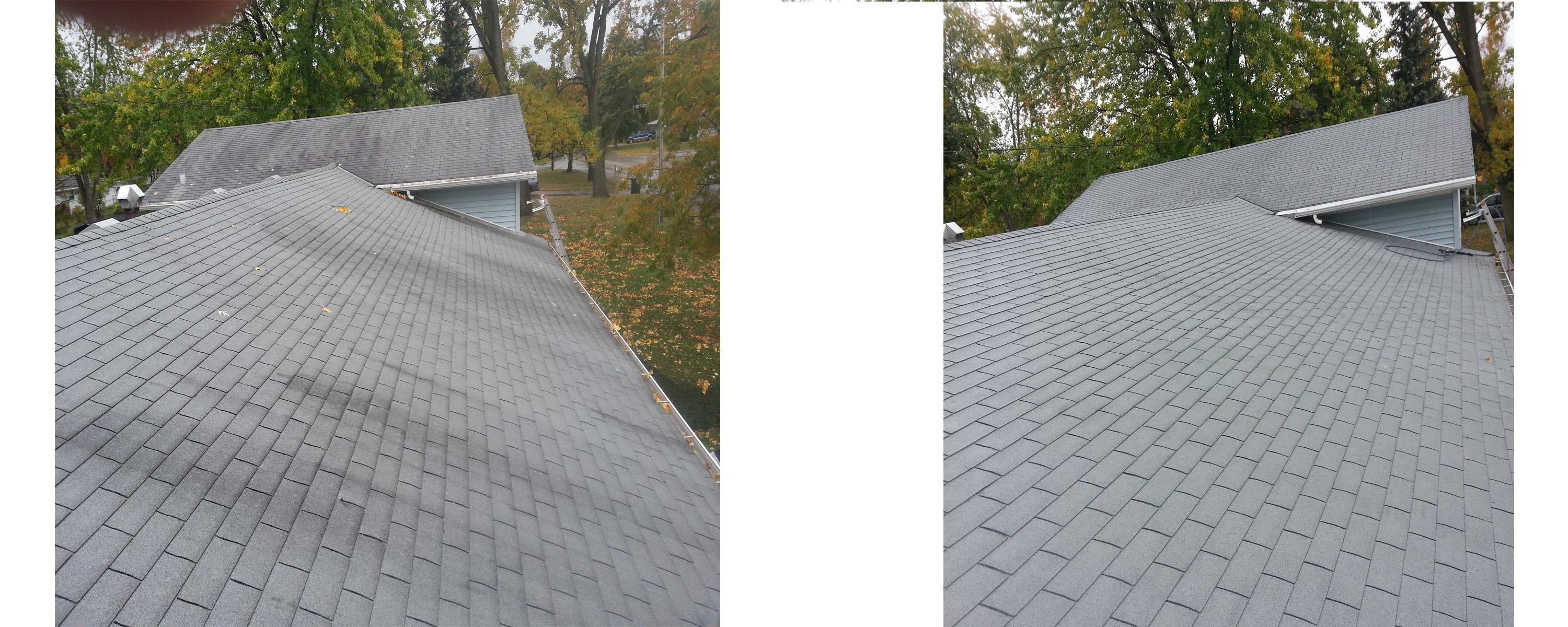 Roof Cleaning Aaa Professional Pressure Washing Amp Window